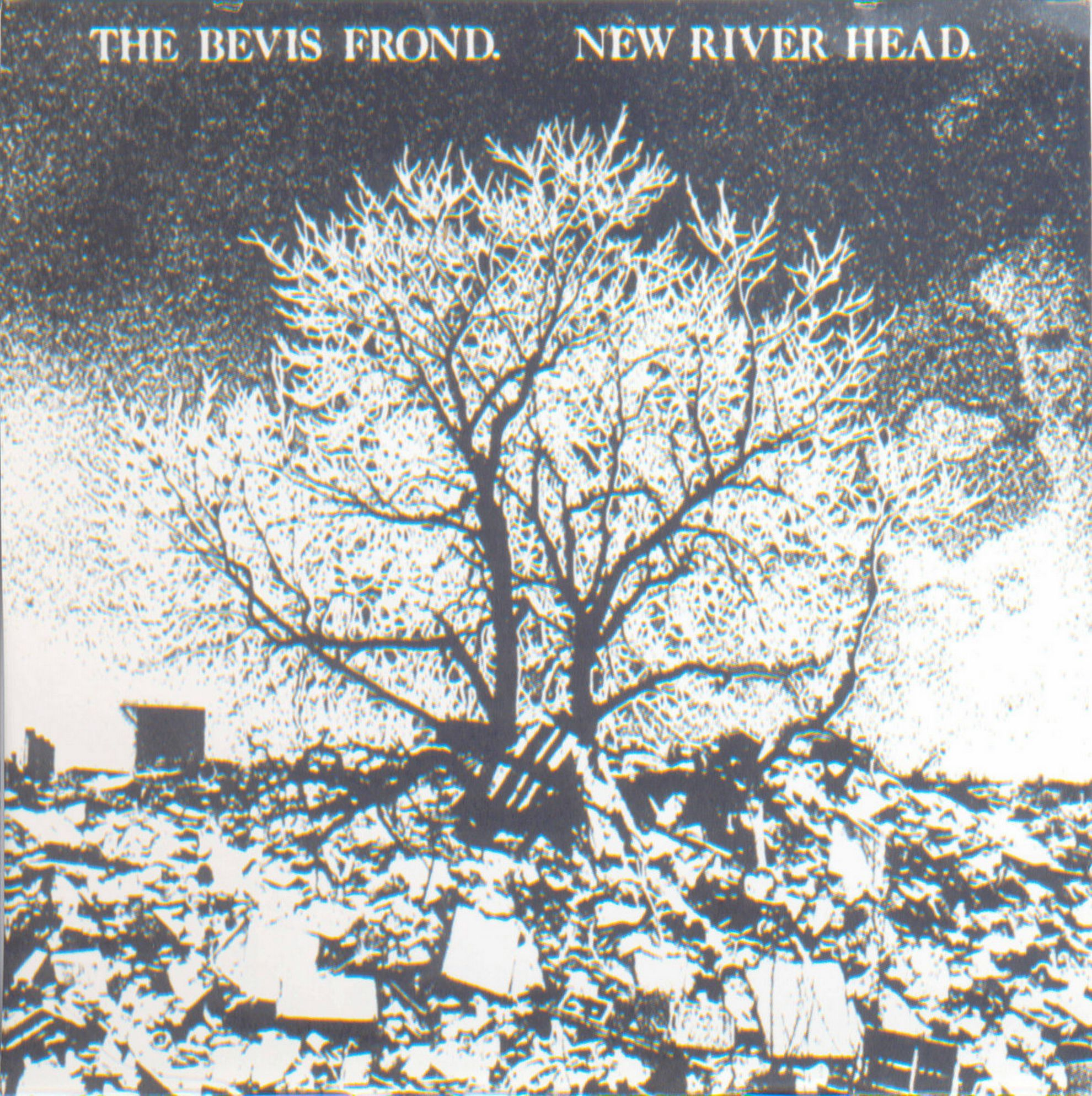 THE BEVIS FROND «New River Head» (1991)